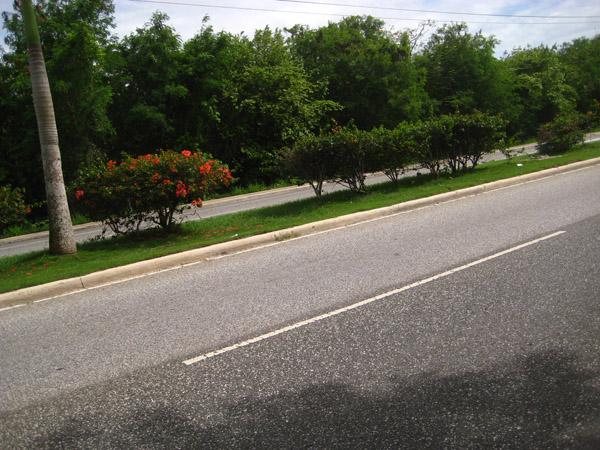 Boulevard Juan Dolio